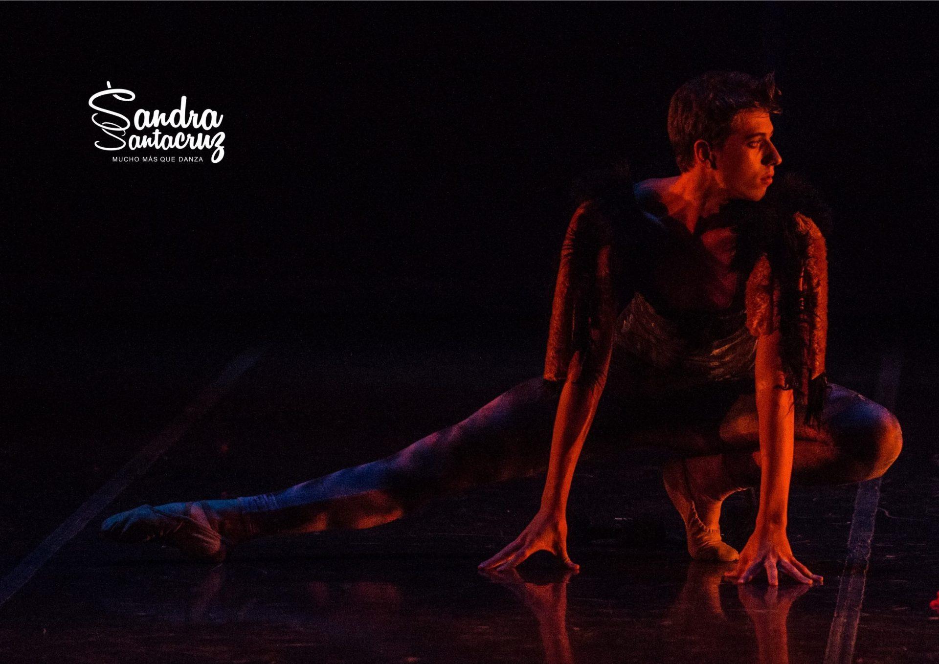 Centro de Danza Sandra Santa Cruz_Mi gato_Axel Sarraille